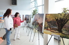 Tolmachevo Opens Photo Exhibition Devoted to the Republic of Korea